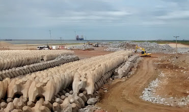 Photo: Máquinas destruindo corelocs no Porto do Açu  - Maio 2014