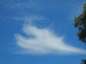 Photo: Engel begleiten uns........