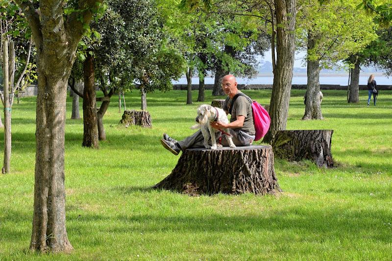 L'uomo e il cane di GVatterioni