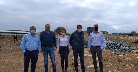 Silencio sobre las once empresas agro expedientadas