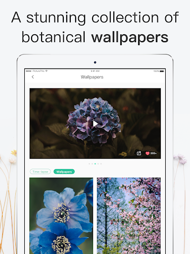 PictureThis: Identify Plant, Flower, Weed and More  screenshots 17