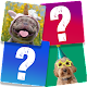 Download Memory Game: Fun Animals For PC Windows and Mac