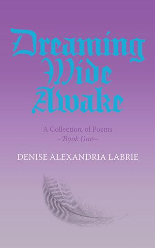 Dreaming Wide Awake cover