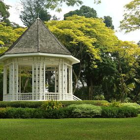 Singapore Botanical Gardens Bandshell by D L - City,  Street & Park  City Parks ( clean, gardens, travel, botanical, bandshell, singapore )