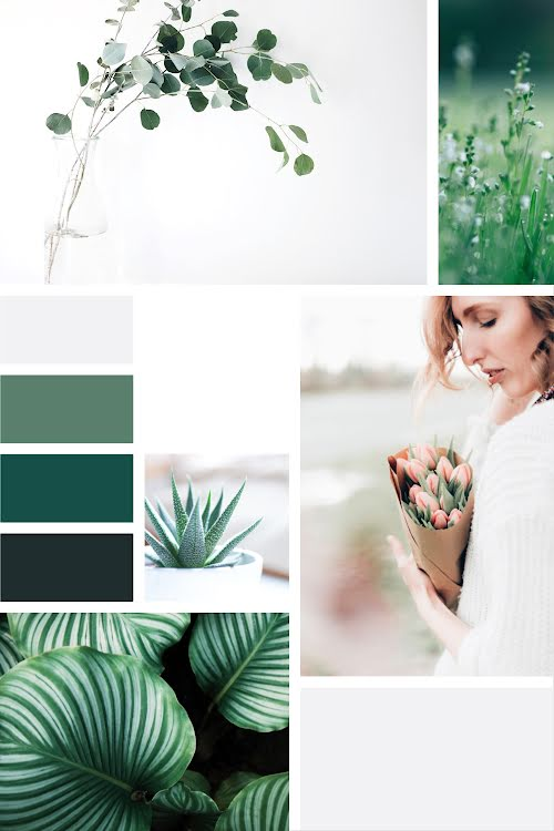 Plants & Flowers Collage - Brand Board Template