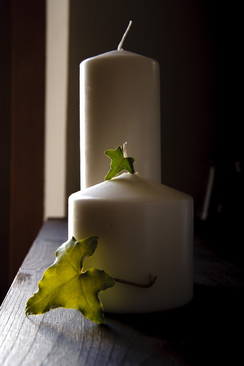 foglie e candele di gabrielecollini