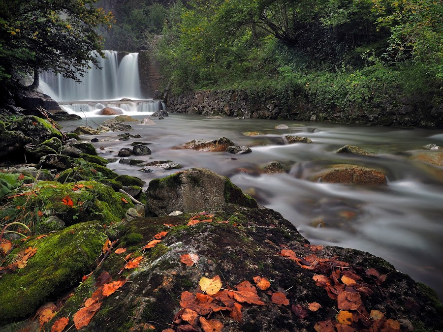 Autumn On Bistrica by Jaro Miščevič - Landscapes Waterscapes ( colors, waterfall, trees, stones, rocks, river )