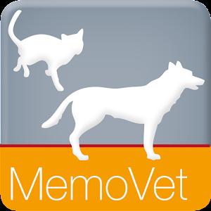 Anästhesie bei Hund und Katze