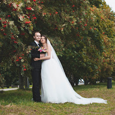 Wedding photographer Tatyana Stolyarova (Brijana). Photo of 14.12.2014