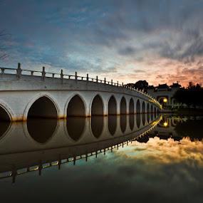 The Chinese Garden Bridge by Chester Chen - Buildings & Architecture Bridges & Suspended Structures ( bridge, garden, singapore, chinese )