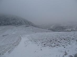 Photo: 12.Pieninki Skrzydlańskie. Śniegu bardzo mało i mocno zmrożony.