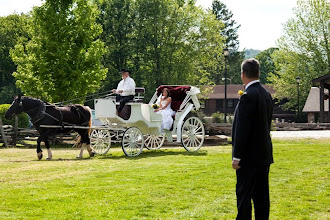 Photo: The Dillard House has a horse and carriage on property.