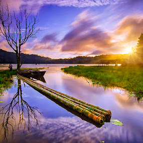 Under the tree by Hendri Suhandi - Landscapes Sunsets & Sunrises ( temple, bali, tree, lake, sunrise )