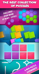 Smart Puzzles Collection APK 4