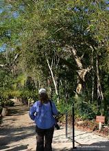 Photo: Kris Falco birding PV Botanical Gardens