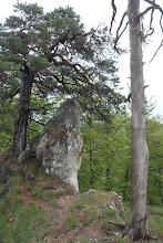 Photo: Skalné formácie na hrebeni
