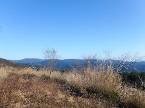 岩場の西側は平坦地に