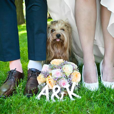 Wedding photographer Iva Mazgutova (ivamazgut). Photo of 23.06.2015