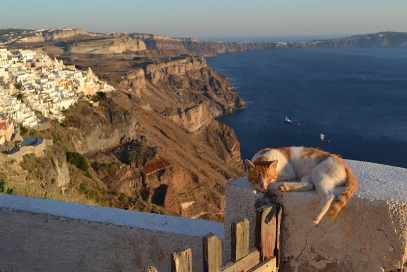 Sleeping in Santorini di Stefaniadl