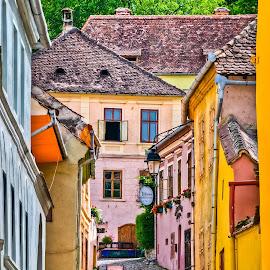 Sighisoara by Eduard Andrica - City,  Street & Park  Neighborhoods