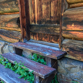Wildflowers Thru Cabin Stairs by Kathy Suttles - Artistic Objects Other Objects