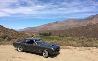 Ford Mustang Rent Western Cape