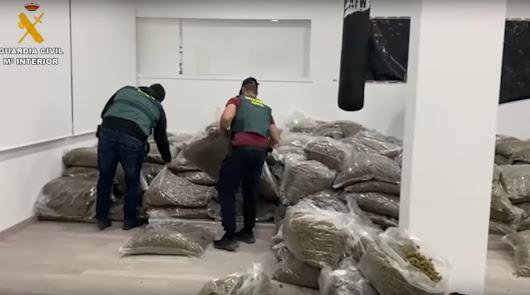 Las incautaciones de marihuana suben un 1.400% en un año en Almería