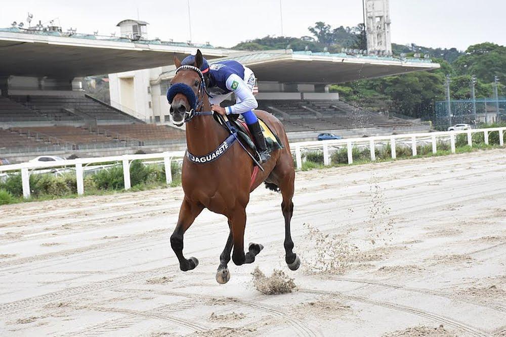 Paliza de Full do Jaguarete en el Ricardo Lara Vidigal