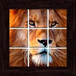 Animals Puzzles - 101 pictures Icon