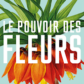 Redouté, the power of flowers
