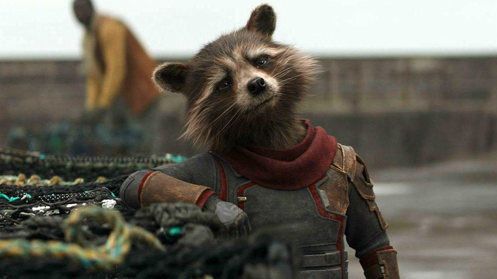 Rocket Raccoon - Upcoming Guardians of The Galaxy Vol.3