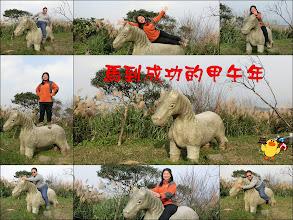 Photo: 馬年應景的石馬