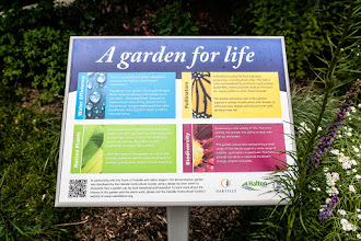 Photo: Anderson Parkette was created in collaboration with Oakville Horticulture Society and the Town of Oakville to show folks how stunning a #biodiversity garden could be. All plants are Ontario natives or nativars and are chosen for their ability to support #pollinator and bird life. Educational signage is important so people understand that what they're seeing is not just beautiful, it's eco-friendly.