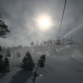 Early Morning Fog by Kerry Demandante - Landscapes Weather ( ski, mountains, chairlift, snow, shadows, colorado, trees, iphone, fog,  )