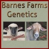 Barnes Farms Genetics