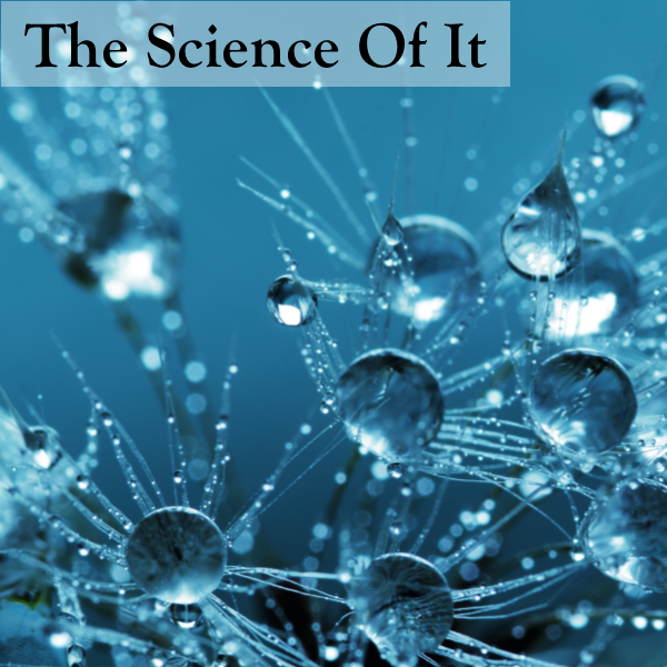 The Science of it