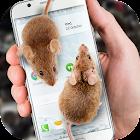 Ratón en Pantalla de Broma icon