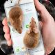 Mouse on Screen Scary Joke (app)