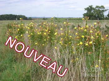 terrain à Savenay (44)