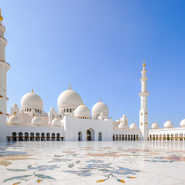 Grand Mosque, Abu Dhabi  by Eduard Andrica - Buildings & Architecture Places of Worship