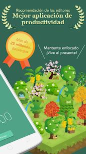 Forest:Mantente Enfocado 2