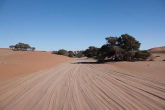 Photo: Namib Naukluft - Last few kilometres to Sossusvlei / Namib Naukluft - posledních pár km z asfaltky k Sossusvlei