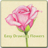 Easy Drawing Flowers