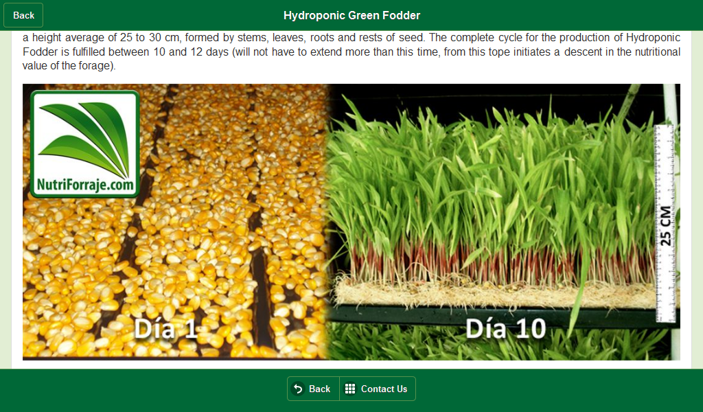 how to build hydroponic fodder system