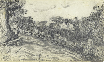 """Photo: Pencil sketch of a Derbyshire landscape by A. R. Wallace in 1844. Wallace says in """"My Life"""" """"Towards the autumn we had a much longer excursion, partly by coach and partly by canal boat, to a very picturesque country with wooded hills and limestone cliffs, rural villages, and an isolated hill, from the top of which we had a very fine and extensive view. I think it must have been in Derbyshire, near Wirksworth, as there is a long canal tunnel on the way there."""" Copyright The A. R. Wallace Memorial fund."""