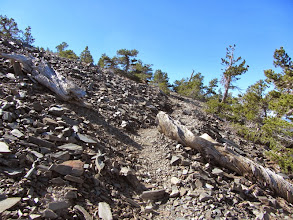 Photo: Nearing the summit of Pine Mt. from its northwest flank