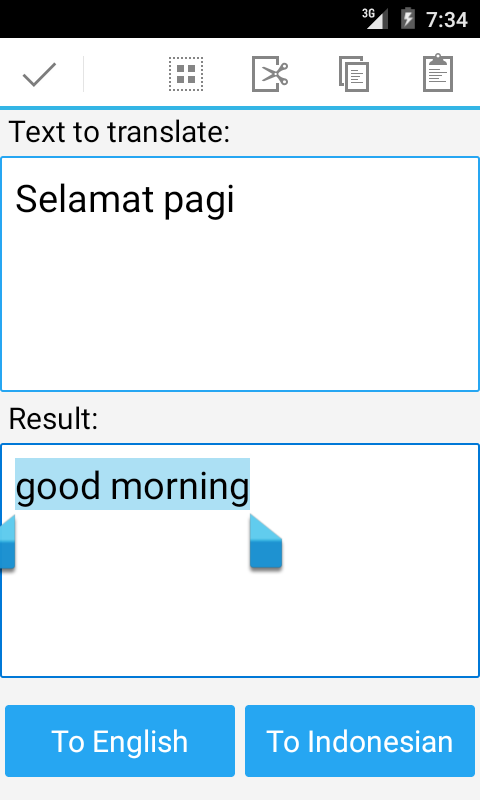 Indonesian English Translator- screenshot