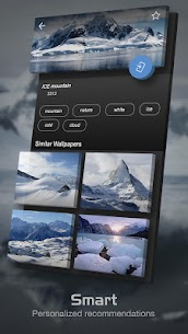Backgrounds (HD Wallpapers) App Download For Android and iPhone 2