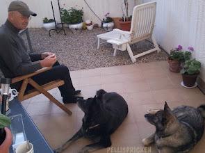 Photo: När vi kom hem satte vi oss ute på terassen med varsin kopp kaffe och lyssnade på Spanskkursen.  Ja, Janne har en smörgår i handen, det är därför Zita och Rozz tittar så beundrande på husse