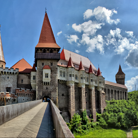 Corvin Castle by Comsa Bogdan - Buildings & Architecture Public & Historical ( nice, romania, travel, landscape, panorama, photography, photo frame, gorgeous, comsa bogdan, wonderful, building, hunedoara, beautiful, image, historic district, enjoy, photo, corvin castle, amazing, history, frame, beautiful landscape, most beautiful, landscape photography, castle, view, historical, medieval, travel photography, romania prin obiectiv )